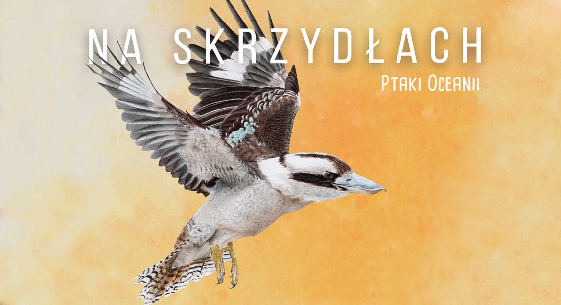 Ptaki Oceanii - rozszerzenie do gry Na Skrzydłach